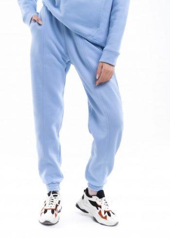 Штаны джогеры женские на флисе Basic Oversize голубые